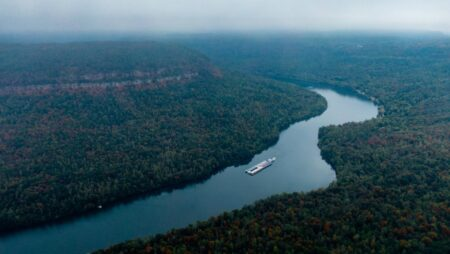 aerial photography of a river